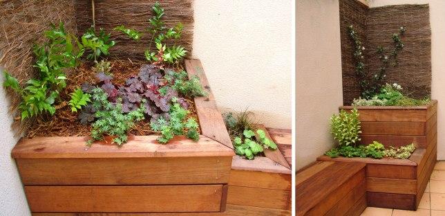 Heuchères, géraniums et autres vivaces colorées