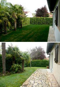 Avant / Après gazon et palmiers