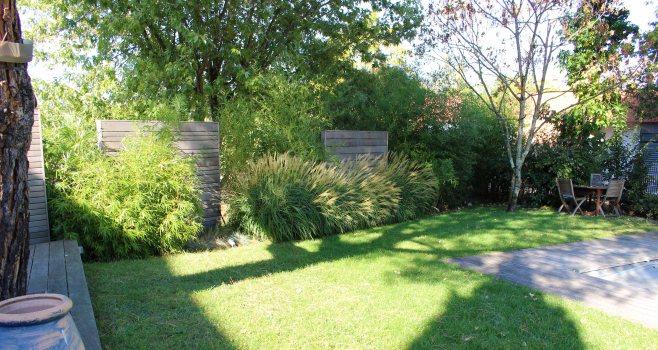 Ligne de Miscanthus, Bambous et panneaux bois